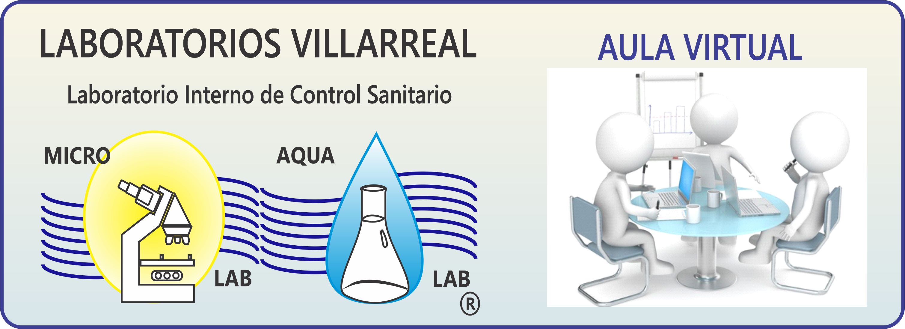 Aula Virtual Laboratorios en Higiene Villarreal